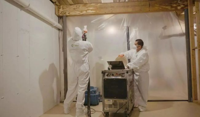 Image mold-remediation-and-removal_1
