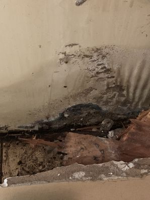 Water Damage Restoration in Milford, CO (2)